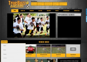 Sports Team Websites